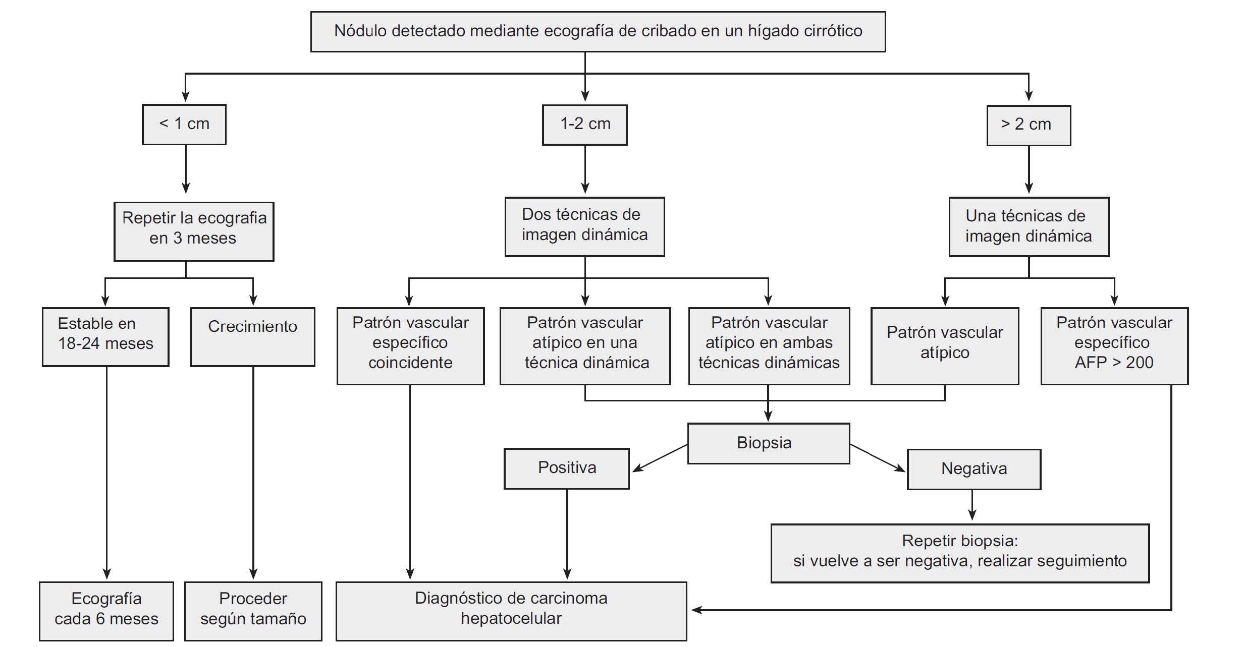 BCLC | Cáncer de Higado España